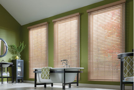 Pleated Shades & Woven Woods